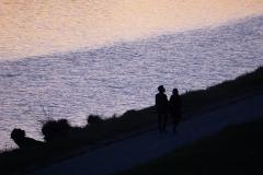 Neue Donau km 4.0 at dawn