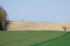 Gallbrunn landscape with man
