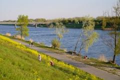 Sonntagsidylle an der Neuen Donau