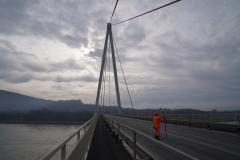 NÖL DBH Fahrbahn Donaubrücke Hainburg
