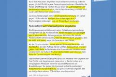 2020-11-22  Geheimtipp für Corona-Leugner & Nazis. : Mit BLM-Leiberl und einer Windel am Kopf hat man völlige Narrenfreiheit