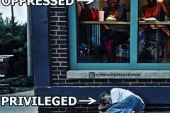 Oppressed-vs.-privileged